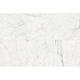 ANTIQUE GHOST MARBLE  01 GLOSSY  30X60 RECTIFIED  - CERIM 754737
